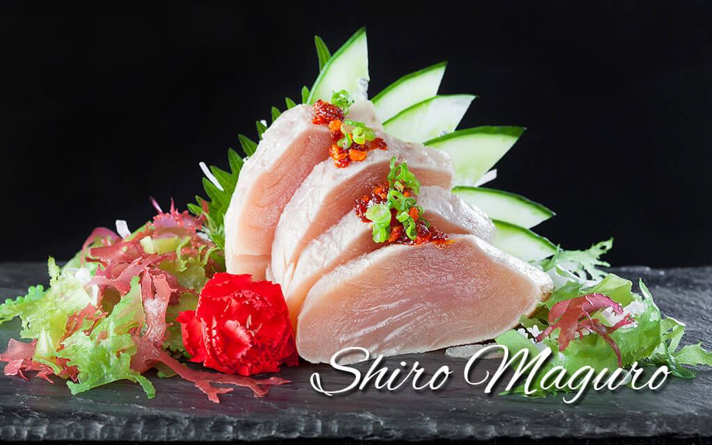 shiro-maguro